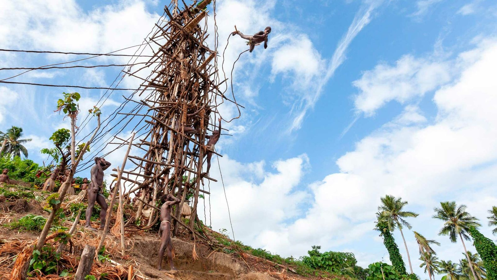 On Pentecost Island, in the Southern Pacific archipelago of Vanuatu, land diving participants must jump off ...