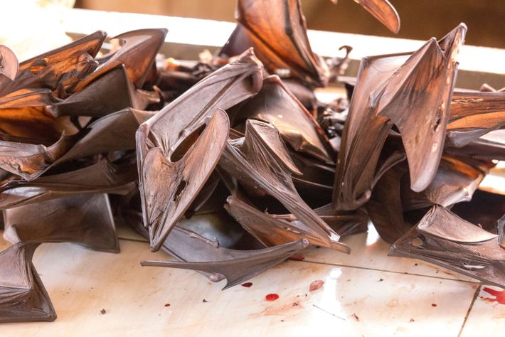 Bats for sale as food at a traditional market in Asia. Such markets – where densely-caged live animals, ...