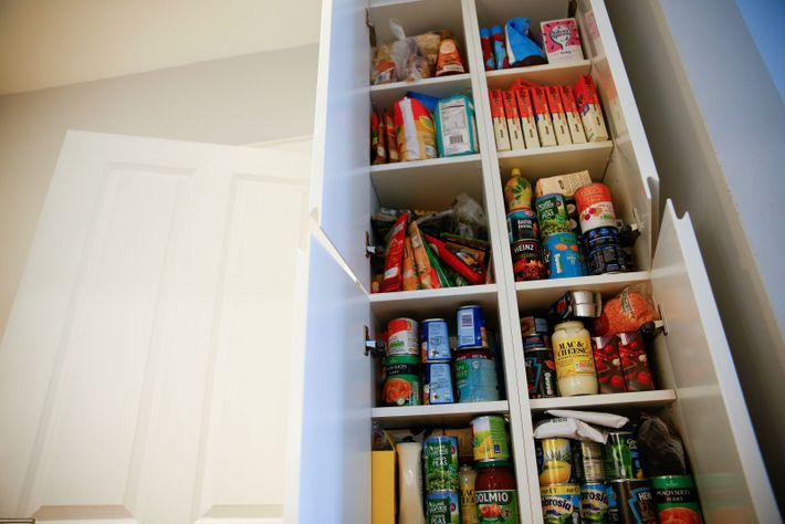 Jo Elgarf's larder cupboard, pictured in 2019 whilst preparing for Brexit. Her prepping turned out to ...