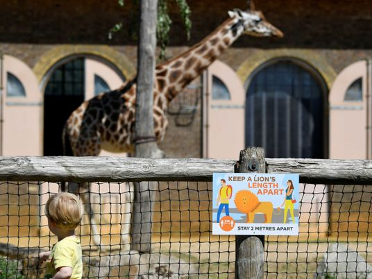 Zoo crisis deepens amidst second national lockdown and 'restrictive' bailout conditions