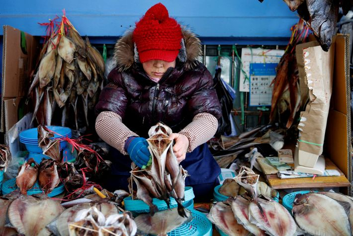 Gangneung is known for its fantastic local markets, selling everything from fresh fish to handicrafts.