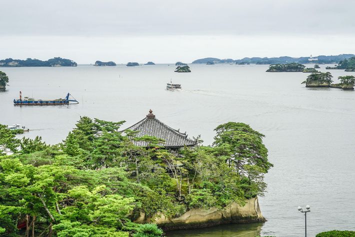 Hundreds of forested islands dot the bay of Matsushima, renowned across Japan for its beauty.