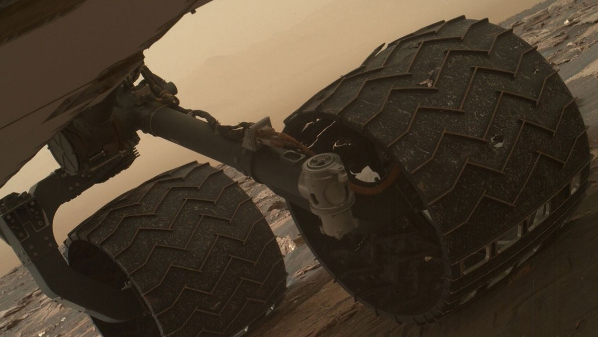 Two of the raised treads, called grousers, on the left middle wheel of NASA's Curiosity rover ...