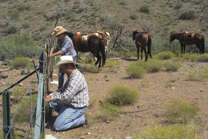 Helen and Jim fixing a broken fence, Arizona
