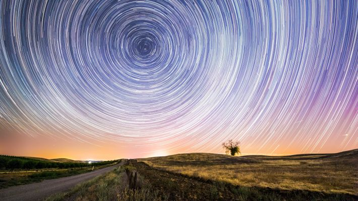 """""""A starry night at Yolo County, California. This tree is the only one left in the ..."""