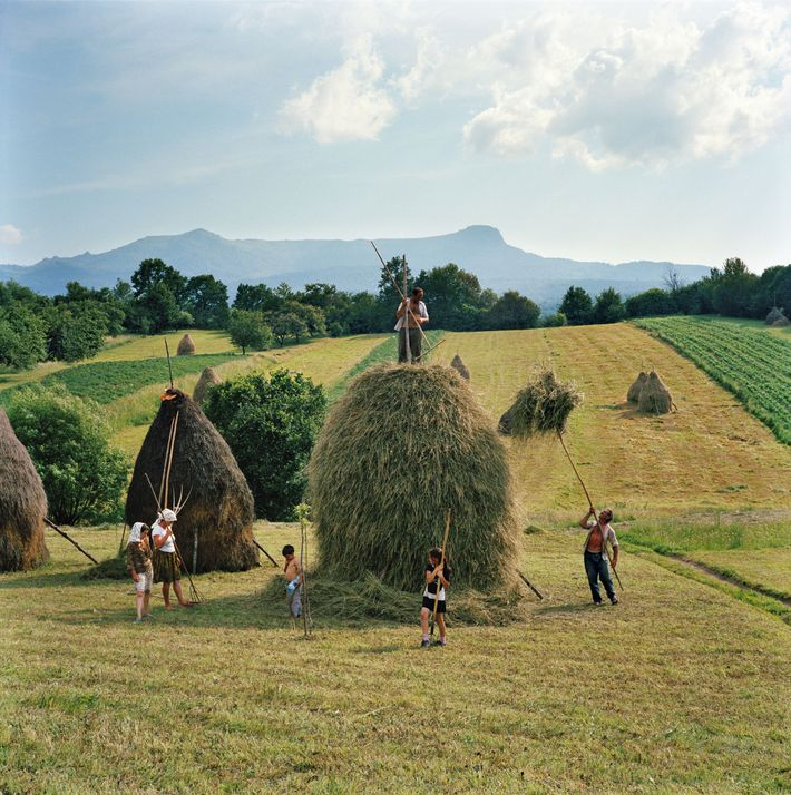 A family creates a towering haystack on a hillside in Breb, Romania.