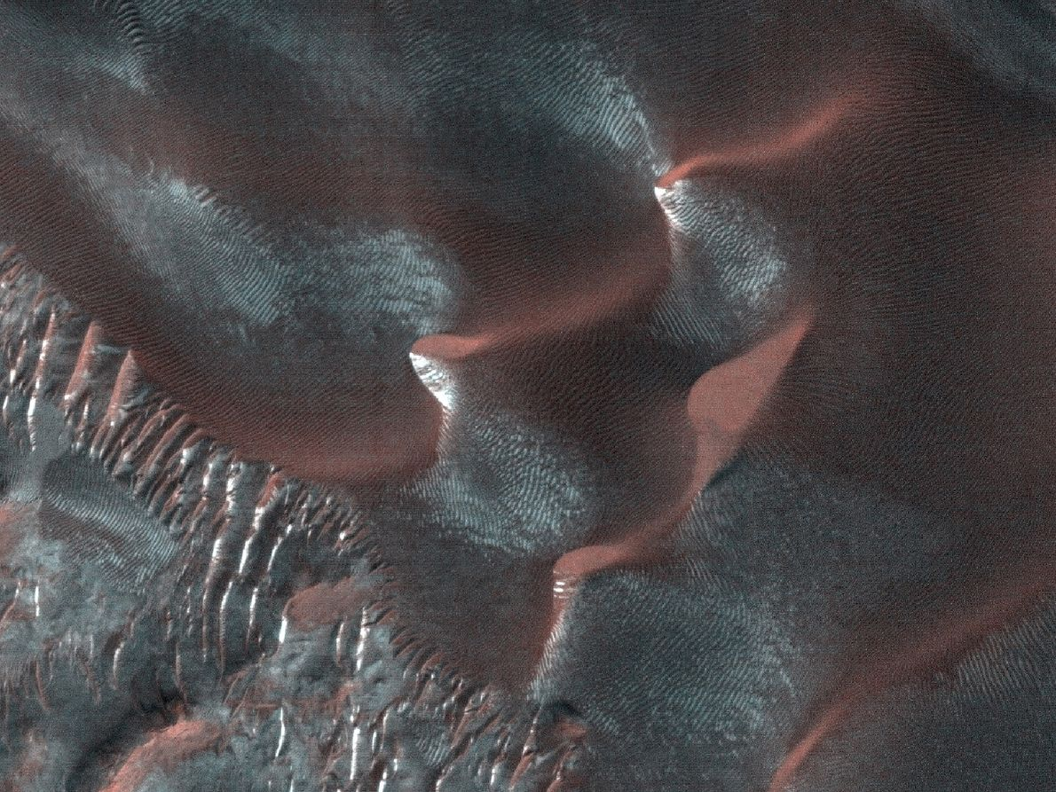 Landforms called 'gullies' found on many large Martian sand dunes consist of an alcove, channel, and ...