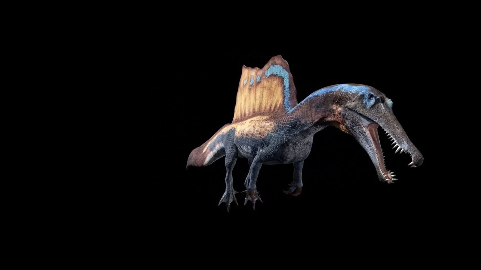 Video: Spinosaurus in 3D