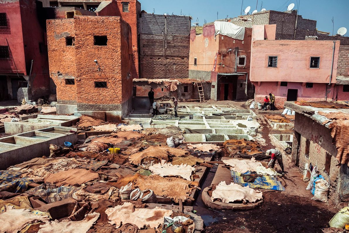 Bustling activity in one of Marrakech's tanneries. Work revolves around the concrete vats, which are the ...