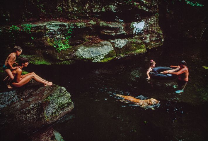 Vacationers swim with their dog in the Neversink River in the Catskill Mountains in New York.