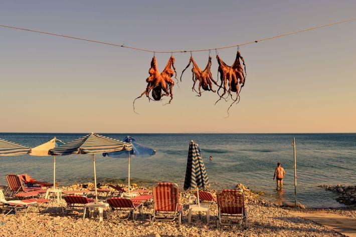 """This image was captured on the Greek island of Samos,"" writes Your Shot photographer Feray Umut. ..."