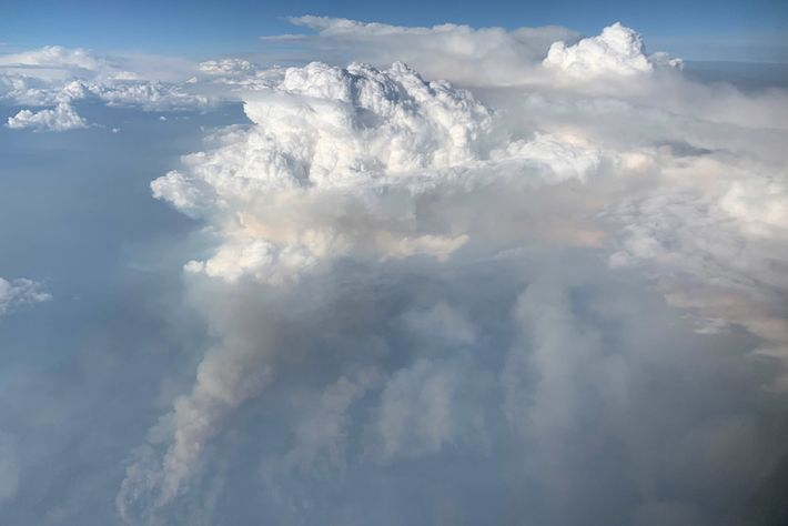 On August 8, 2019, NASA's DC-8 flying laboratory got a rare look at a pyrocumulonimbus cloud ...