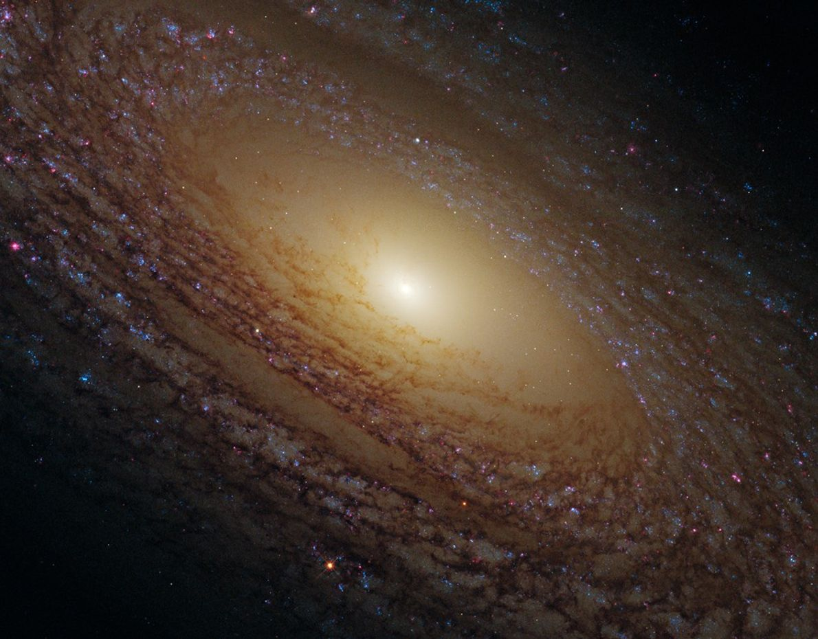 Tucked away within the northern constellation of Ursa Major is this 46 million light-year distant galaxy ...