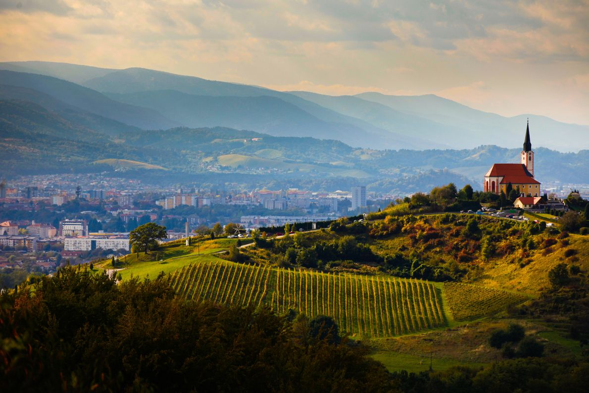Slovenia's second largest city, Maribor, sheltered by the Pohorje Mountains –seenin the far distance. Framing the ...
