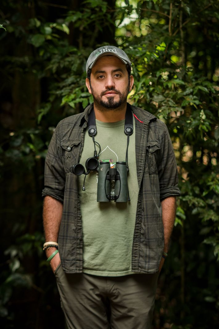 David Rodriguez, 34, is a bird-watching guide and biologist who was expecting a busy high season ...