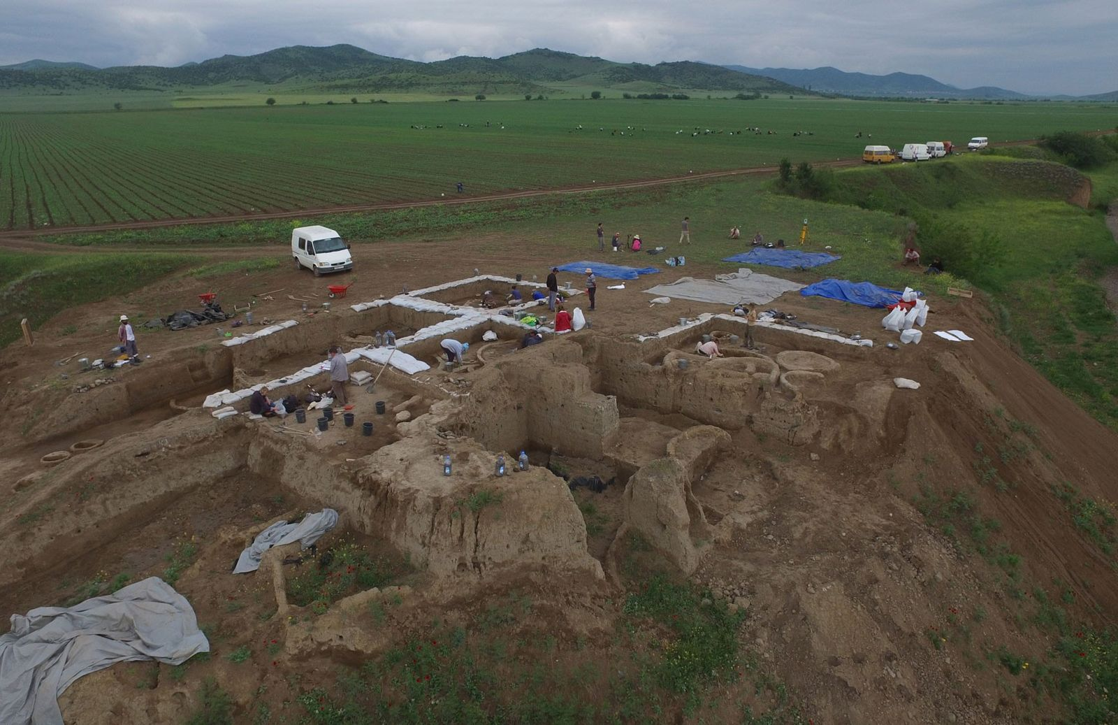 Oldest Evidence of Winemaking Discovered at 8,000-Year-Old Village