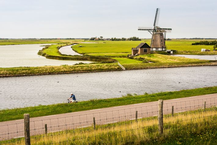 A cyclist in Oosterend, north Holland, passes Het Noorden windmill, built in 1878.