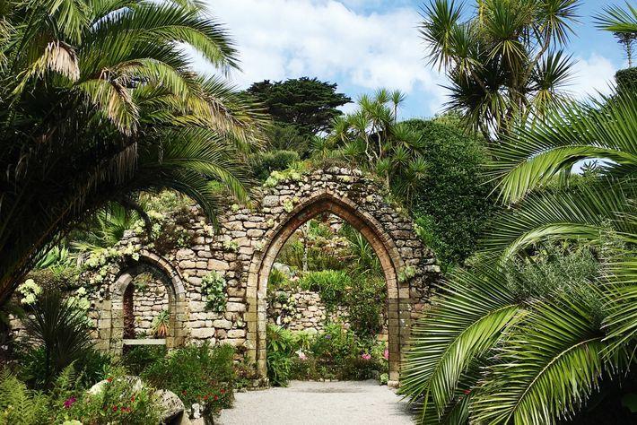 Tresco Abbey Garden, Isles Of Scilly.