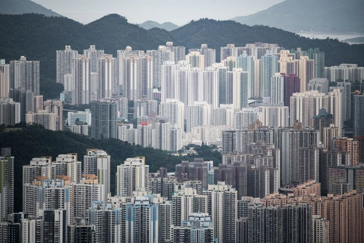 "The view of Kowloon from the ridge of Lion Rock Mountain in Hong Kong. The ""Lion ..."