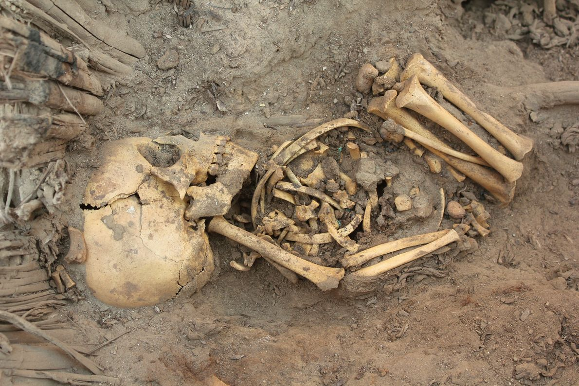 See Next: Huge Peru Tomb Found—80 Bodies, Ring of Babies ...