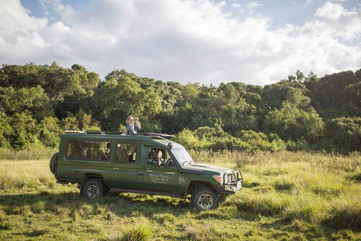 The winner and their guest will get to head out on game drives to try and ...