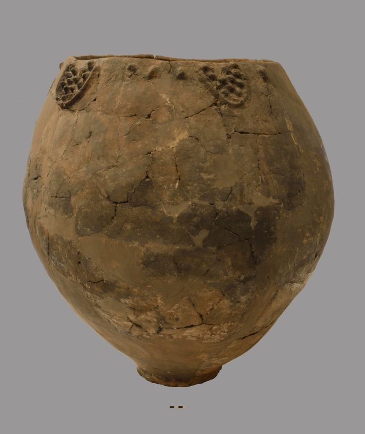 Organic residues recovered from the remains of ceramic vessels such as this provide the earliest evidence ...