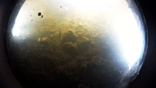 Life Found Deep Under Antarctic Ice for First Time?