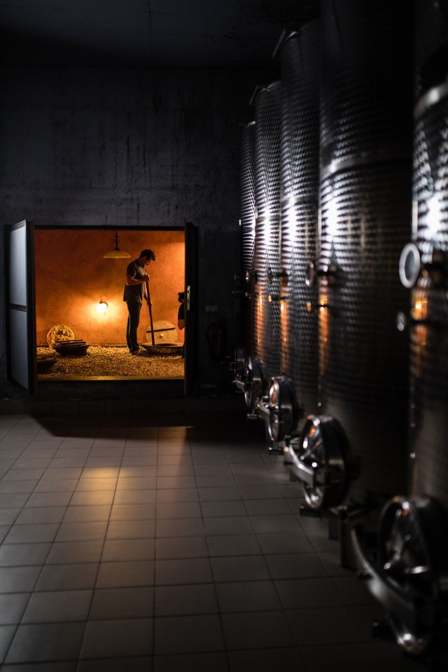 Winemaker, Andrej Erzetič, stirs wine in the family's cellar; these traditional fermenting techniques stretch back thousands ...