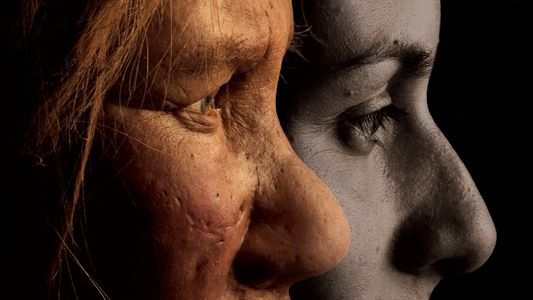 The Neanderthal With the World's Oldest Tumor