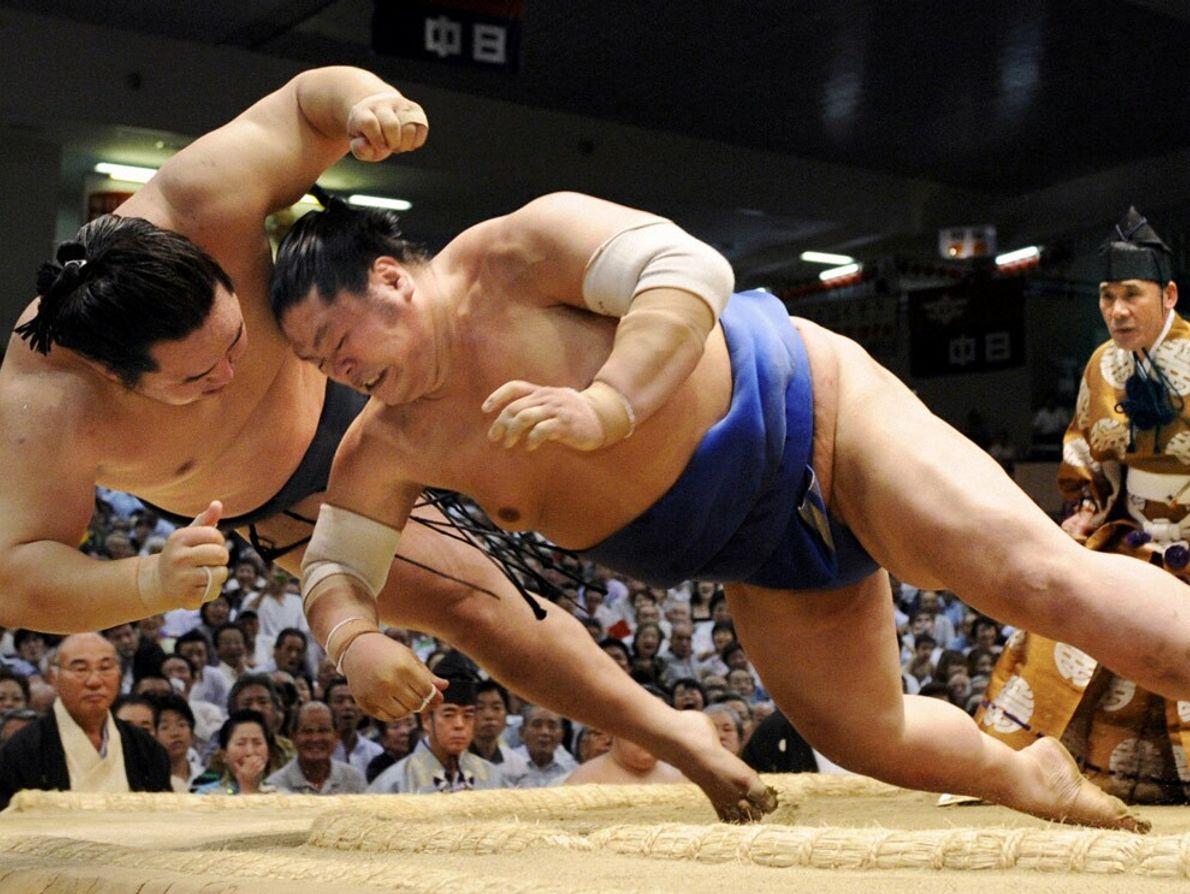 Sumo Wrestlers, Nagoya