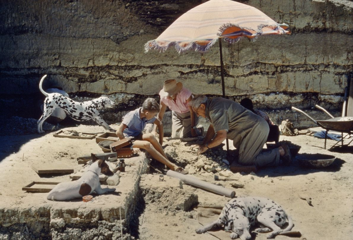 The Search For Early Man