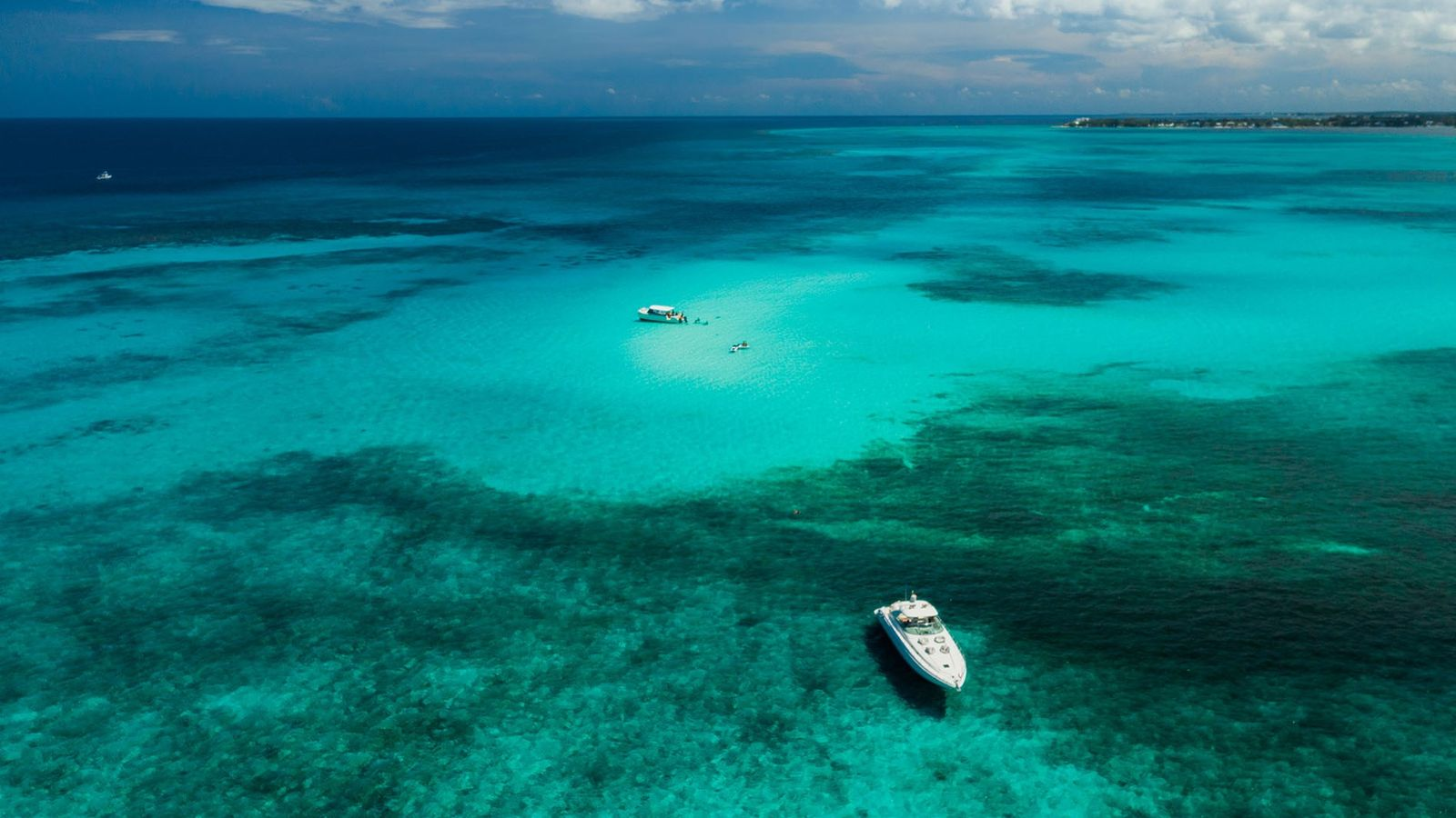 From Stingray City and Starfish Point to the 20ft Bloody Bay Wall, the Cayman Islands are ...