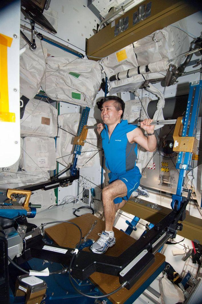Japan Aerospace Exploration Agency astronaut Koichi Wakata, Expedition 38 flight engineer, goes through a workout on ...