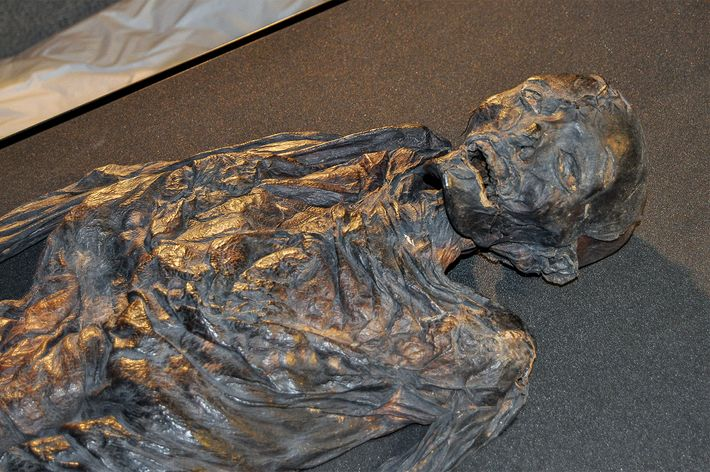 Haraldskær Woman, who is kept at Denmark's Vejle Museum, was first thought to be a Norwegian ...