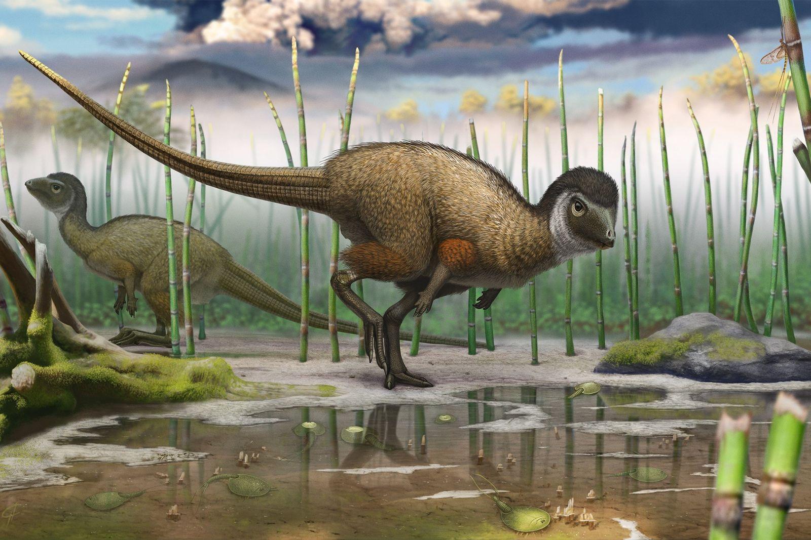 Kulindadromeus feathered dinosaur 01
