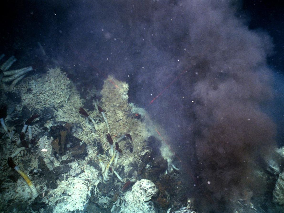A cloud of hydrothermal fluids streams from a black smoker, or mineral chimney, along the Mid-Ocean ...