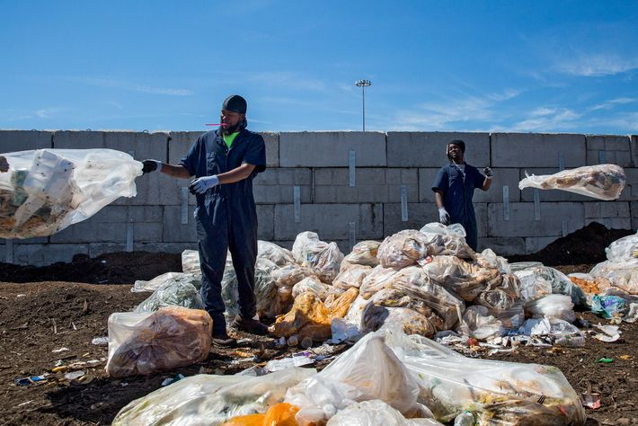 Workers sort bags of lunchroom waste from New York City schools during an audit of a ...