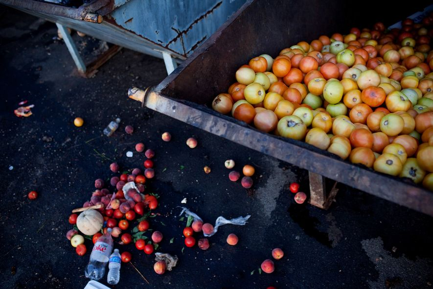 Unsold tomatoes fill a Dumpster at a farmers market in Asheville, North Carolina, even though community ...