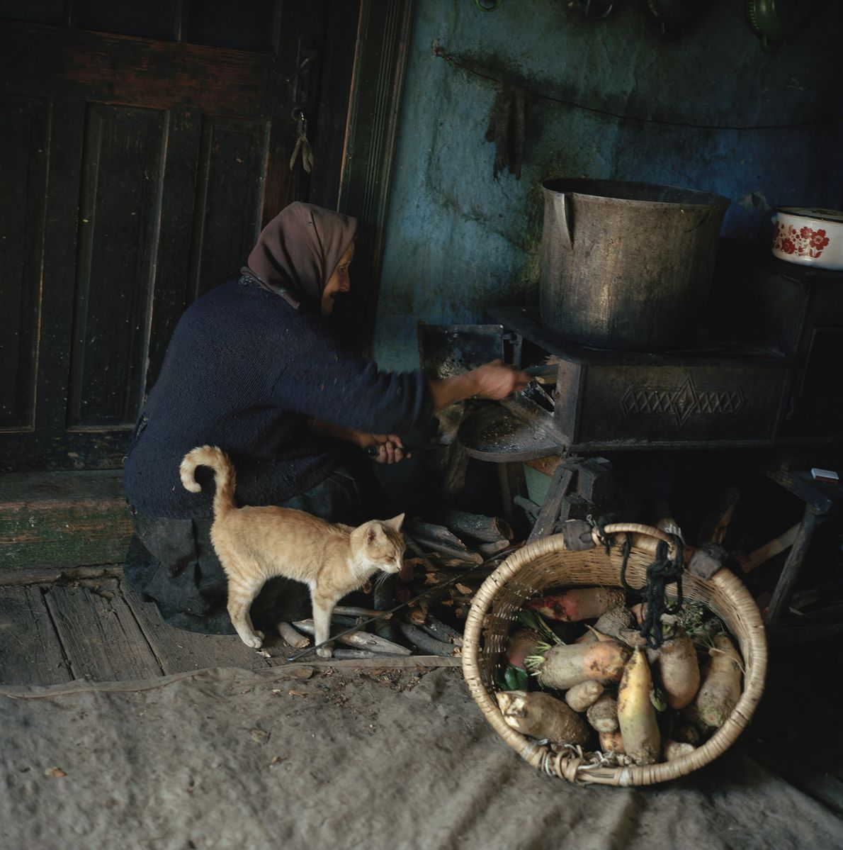 What's cooking? A cat sidles up to a farm woman in Breb, Romania, as she prepares ...