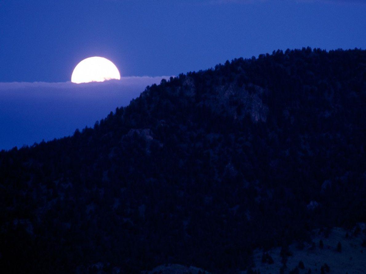 Moon Over Yellowstone
