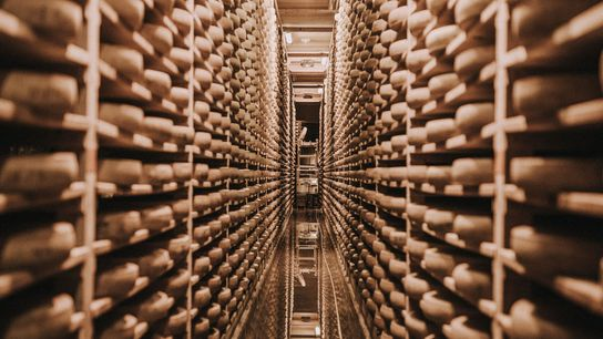 Comté's real character — its fruity, nutty notes and buttercup-yellow hues — comes from the cellars ...