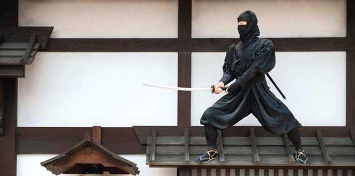 Japan: The ninja new wave