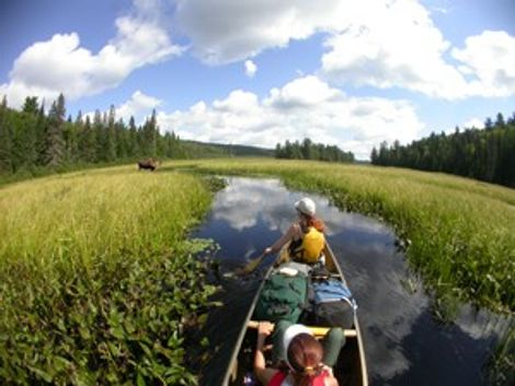 Algonquin Provincial Park.