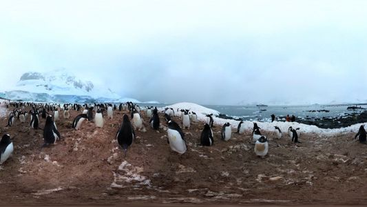 360° Antarctica - Unexpected Snow