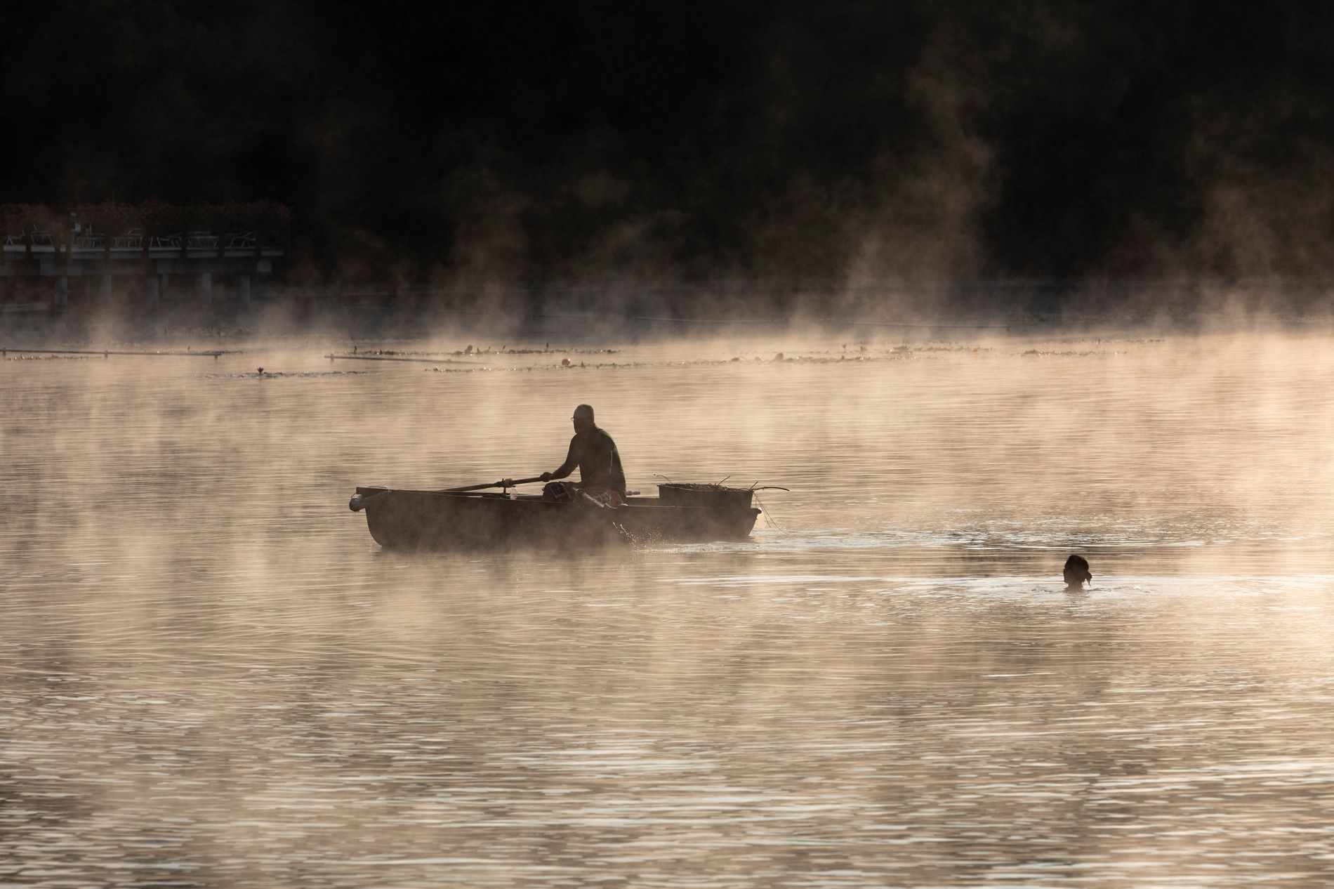 A morning swimmer meets a boater on thermal Lake Hévíz, a biologically active lake composed of ...