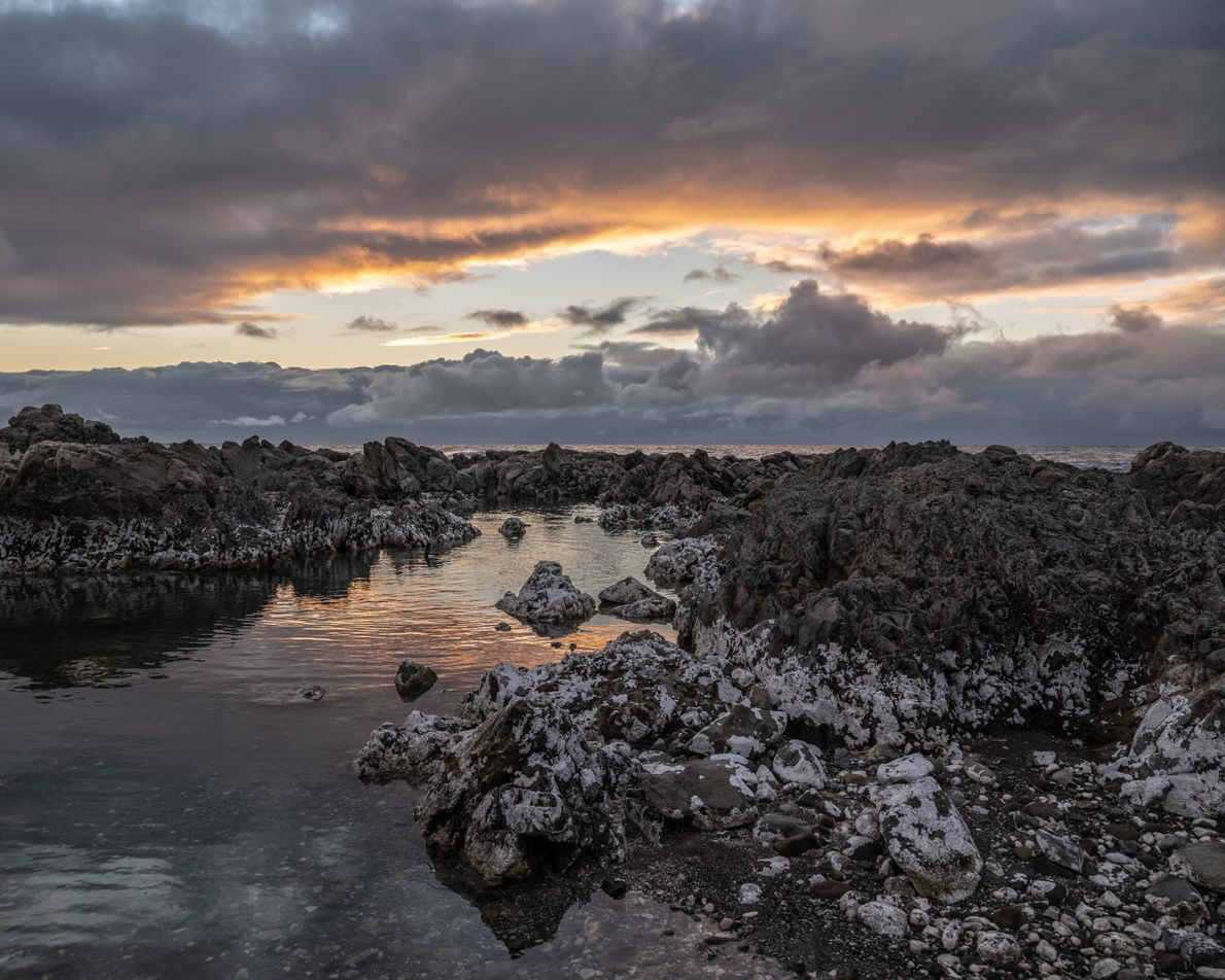 The Pacific Ocean surrounds Kaikōura, a dramatic and wildlife-filled peninsula on the east coast of New ...