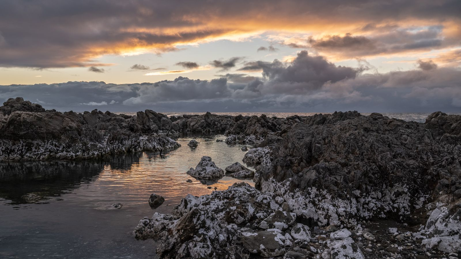 Up close and personal: Kaikōura's wild shores