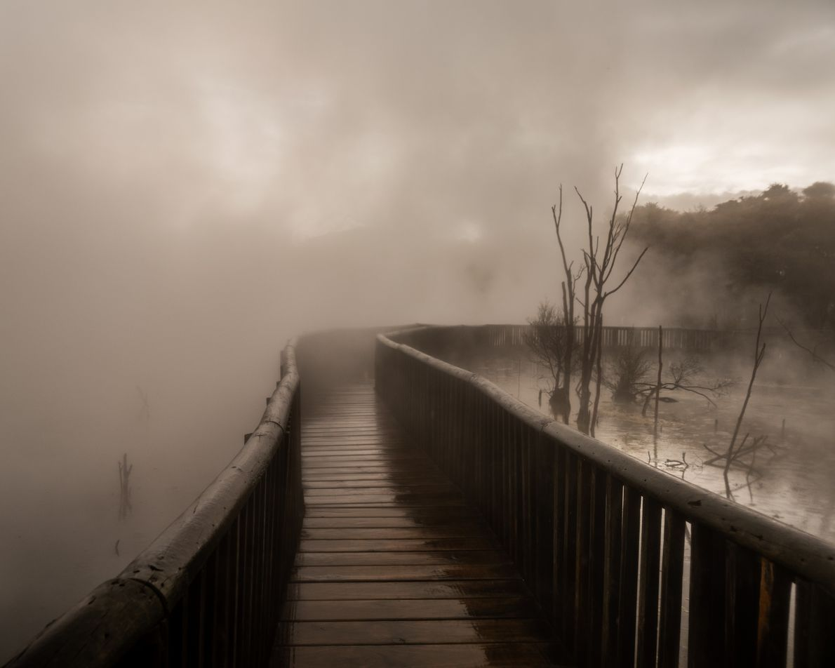 Rotorua is a great place to let off some steam. This geothermal wonderland bubbles with natural ...
