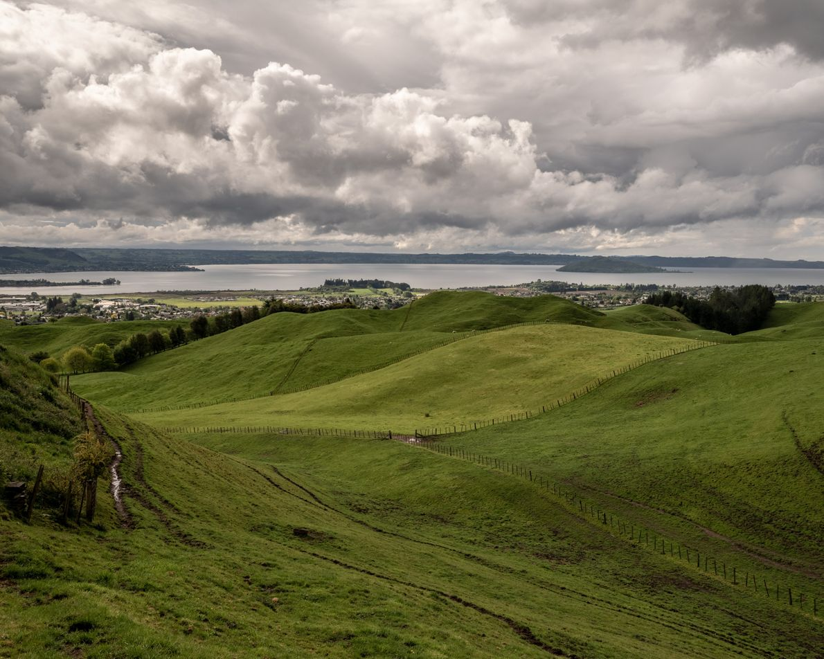 Stretching from the southern Coromandel Peninsula to the East Cape on the North Island, the Bay ...