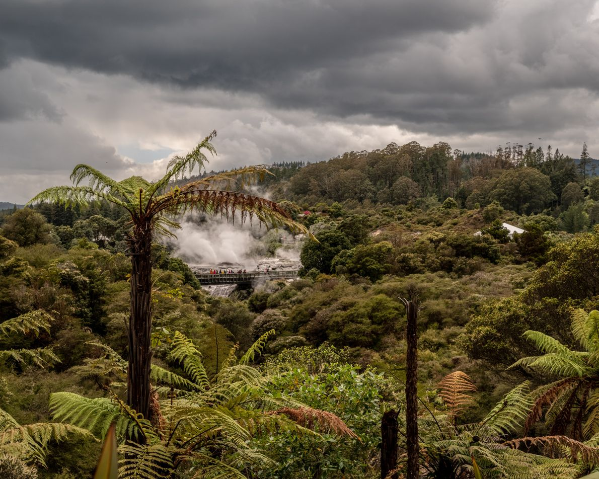 Māori knew a good thing when they saw it, settling the Bay of Plenty around the ...